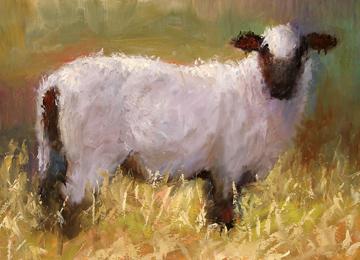 Sheep 72dpi-s